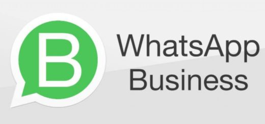 Whatsapp Business in Italia