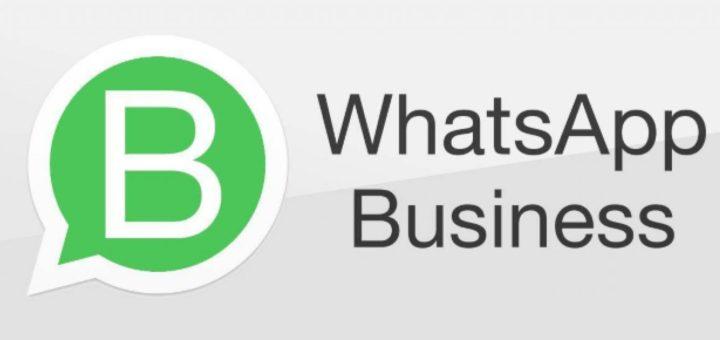 Whatsapp Business in Italia